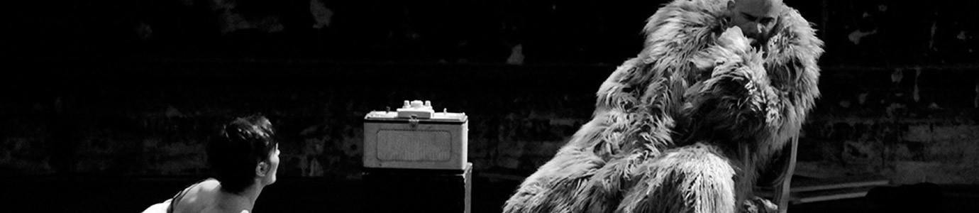 Catpure d'écran du site Théâtre du Nord
