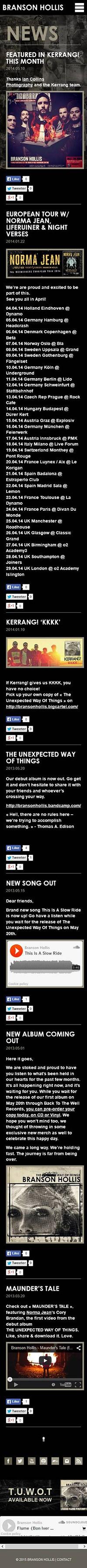 Catpure d'écran mobile du site Branson Hollis